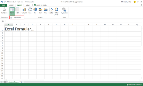 Excel Web App Forms