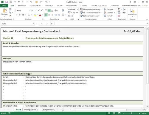 Das Handbuch zur Excel-Programmierung